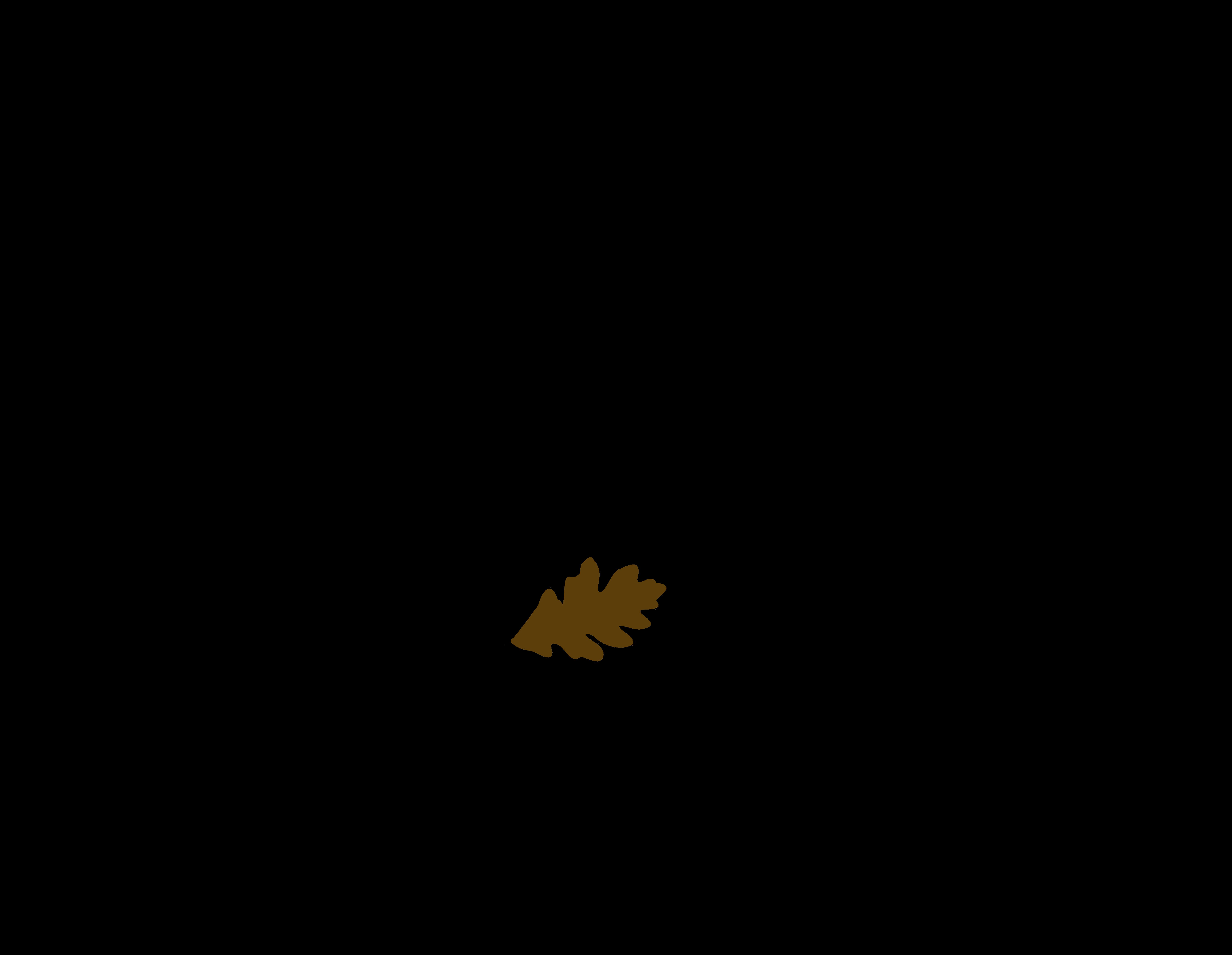 Logo marque Frénéthik
